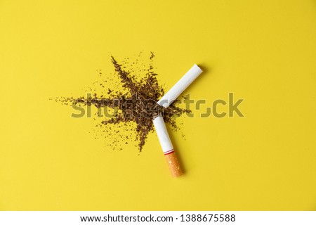 Close up cigarette broken tobacco blast spread on yellow pastel background with light side and little shadow. No and quitting smoking concept.
