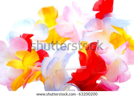 Close-up colorful Hawaiian lei with bright flowers on white background