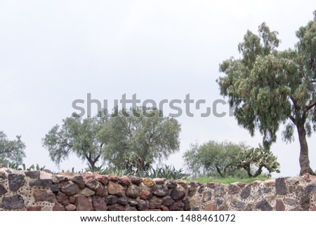Close Up, Detail of Archeological Site of the Pyramid of the Sun and Pyramid of the Moon, Teotihuacán, State of Mexico, Mexico
