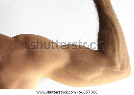 Close up detail of the arm of a man showing bicep