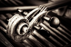 Close-up detail of violin head with string background