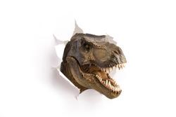 close up dinosaur through the paper wall