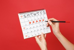 Close up female holds in hand red pencil female periods calendar for checking menstruation days isolated on trending red wall background. Medical healthcare gynecological concept. Copy space. Mock up