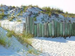 Close up fence on beach