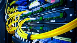 Close up fiber optic in server room , network cables installed in the rack. yellow and blue