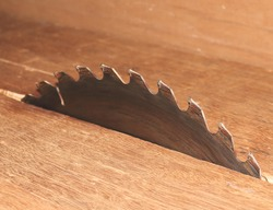 close up for circular saw in carpenter's shop
