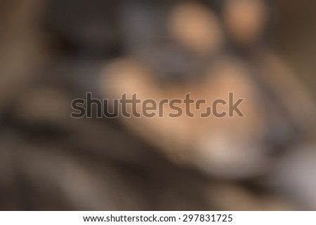 Close up half face of black dog while injury with blurred animal abstract background