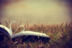 Close up heart shape from paper book on grass field with vintage filter blur background