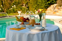 close-up image of a healty breakfast on a table with a swimming pool and park in the background. july 2014