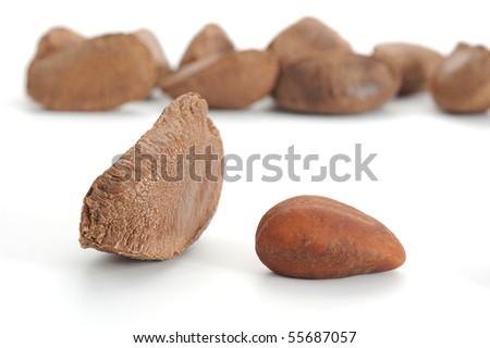 Close-up image of Brazil nut studio isolated on white background