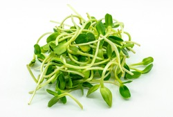 Close up image of fresh young sunflower sprouts on white background, organic young sunflower sprouts.