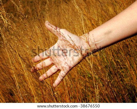 close up image of hand and gold field background