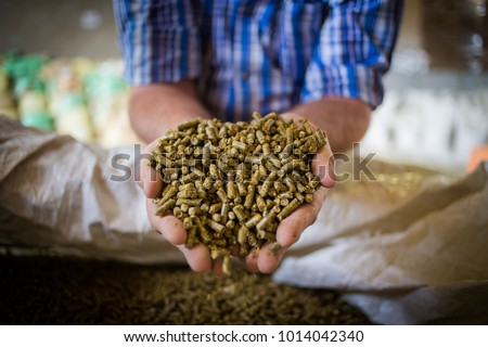 Close up image of hands holding animal feed at a stock yard #1014042340