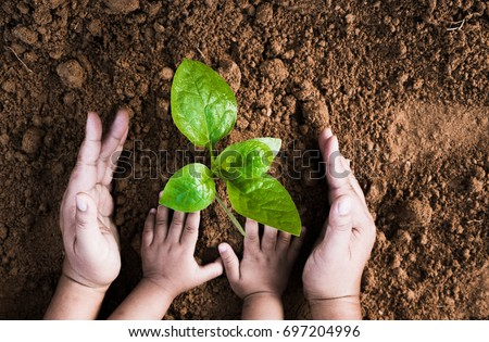 Close up Kid hand and father planting young plant to black soil top view and grunge style #697204996