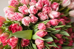 Close-up Large Beautiful bouquet of mixed tulips. Flower background and Wallpaper. Floral shop concept . Beautiful fresh cut bouquet. Flowers delivery