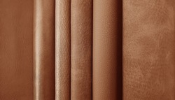 close up leather fabric samples catalog for interior uphostery works in elite brown tone color.
