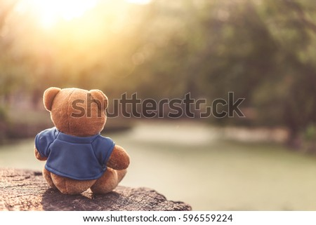 Stock Photo Close up lovely brown teddy bear sitting on grass field with lens flare. Retro and vintage style