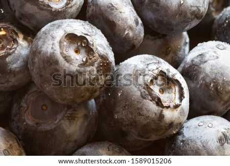 Close up macro photo of a heap of blueberries. Two in the center. Fresh, healthy, freshly washed