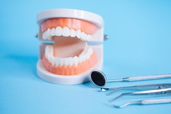 Close up macro shoot of teeth model with dental tools  on blue background. Oral cavity care concept