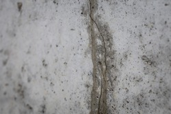 Close up macro shot of a leaking crack in a basement wall