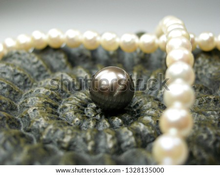 close up natural south sea pearl and pink pearl with seashell #1328135000