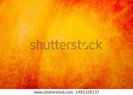Close up nectarine skin. Fresh organic peaches. Fruit peaches background. Fruit background.