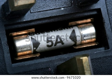 Close up of a 5 amp fuse in it's holder in a plug