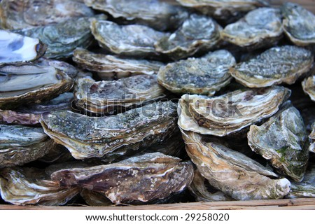 Close-Up Of A Basket Of Fresh Oysters For Sale At A French ... - photo#46
