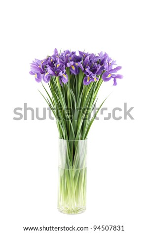 Close-up of a beautiful bouquet of purple irises in a glass vase. Isolated on white background