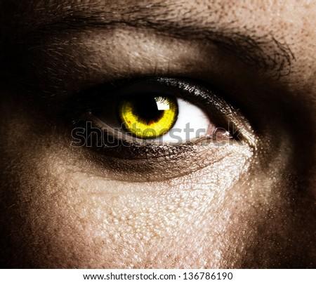 Close up of a beautiful eye
