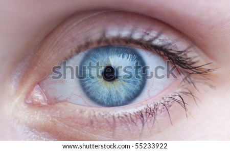 Close-up of a beautiful female blue eye
