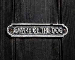 Close-up of a Beware of the Dog sign.