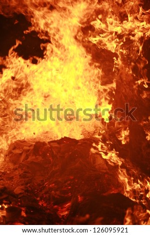 close-up of a big wooden fire. outside