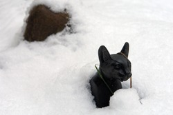 Close up of a black basalt Egyptian cat statuette emerging from beneath the melting snow. Thaw in Poland, Europe