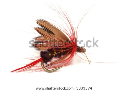 Close-up of a colorful fishing fly on a white background.