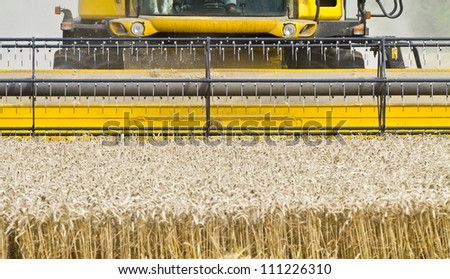 Close up of a combine harvester at work cutting cereal approaching the camera