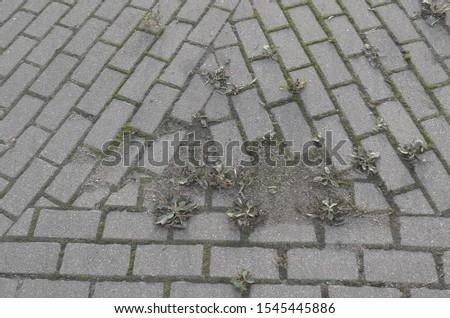 close up of a concrete brick triangle