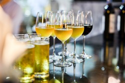 Close up of a glass of beer, wine and champagne in a bar. Many glasses of different alcohol drink in a row on bar counter. Select focus.