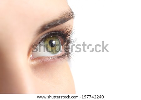 Close up of a green woman eye isolated on a white background              #157742240