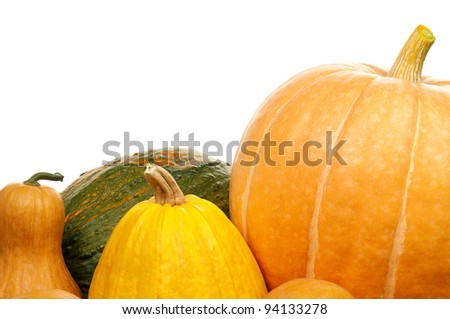 Close up of a group of pumpkins of different shapes and sizes