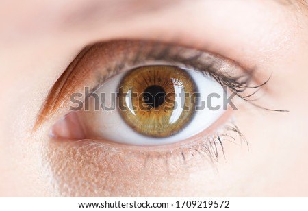 Close-up of a hazel colored eye