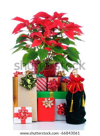 Close up of a large stack of wrapped Christmas presents of varying sizes and shapes with a Poinsettia. Vertical format with foreground reflection isolated over white.