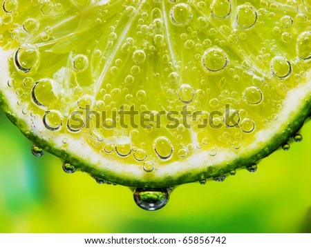 Close-up of a lemon slice with bubbles