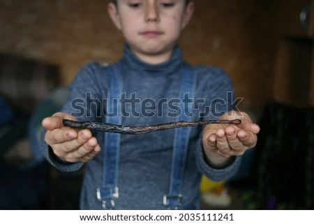 close-up of a magic wand in the hands of a boy. based on the novels by J.K. Rowling about Harry Potter Stock fotó ©