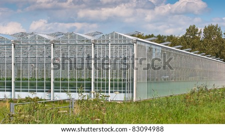 Close up of a modern Dutch greenhouse complex with open glass panels