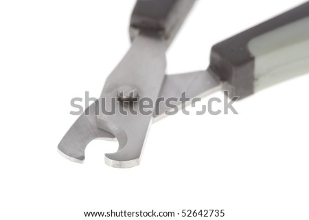 Close up  of a nail clipper for cats or small dogs isolated on white background