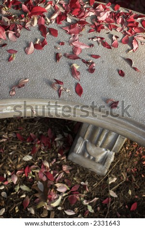 Close up of a park bench with fallen leaves on it
