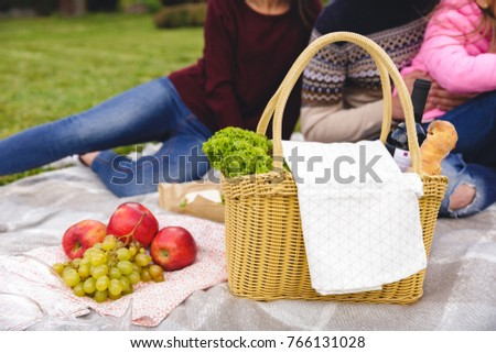 Close up of a picnic basket on blanket outdoors with family on a background