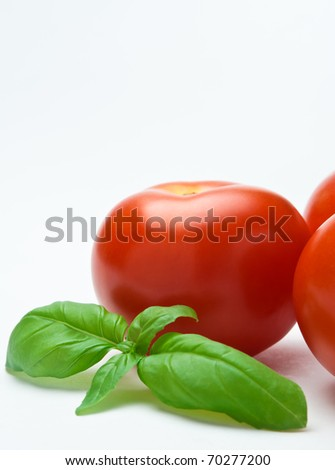 Close up of a sprig of basil nestled against a group of red tomatoes.  Only one single tomato is entirely in frame.