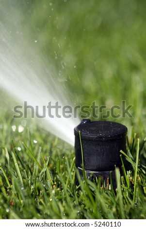 Close up of a sprinkler head spraying green grass